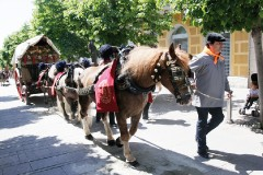 Tres tombs4